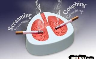 看了这些图片你还想吸烟吗?(本贴图片可能引起不适)(转)