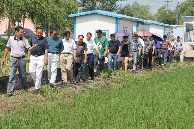 重庆市农委组织有关区县渔业部门赴辽宁盘锦学习稻田生态种养经验