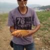 [原创]7月18羊毛湾橙色鲤鱼