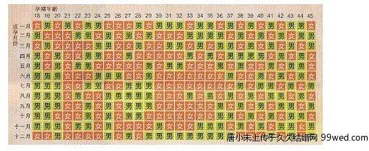 生男生女清宫图2013 高清图片