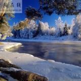 2010年的雪景