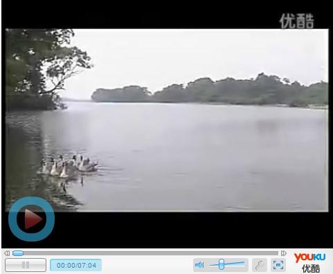 瑶都江华视频