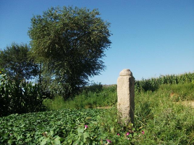 建平地方掌故――卧龙岗和盖子庙的传说