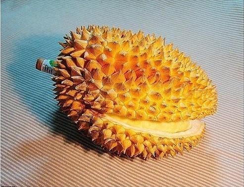 [分享]榴莲壳煲鸡――难以抗拒的大补汤