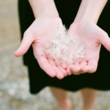 [分享]把爱 捧在手心里