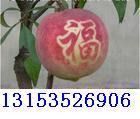 [原创]水果贴字以后,可以提高水果的价格