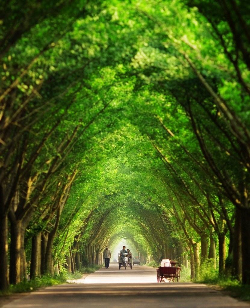 走在乡间的小路上