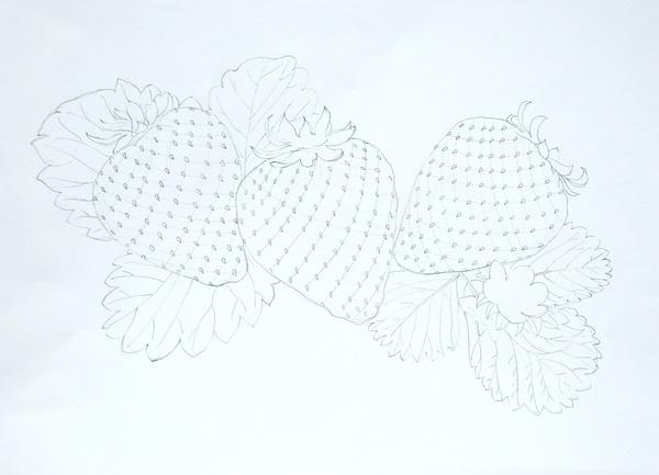 彩色铅笔画——草莓的步骤