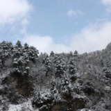 黔江终于下雪了,厚厚的雪!