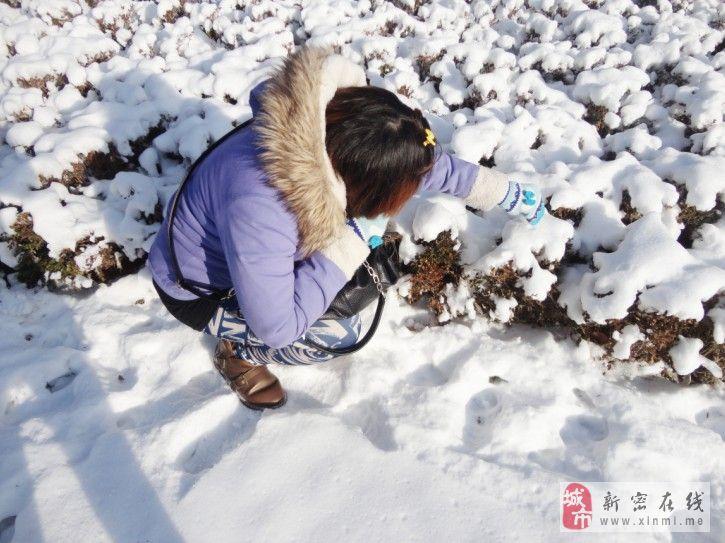 [贴图]冬日卖萌记