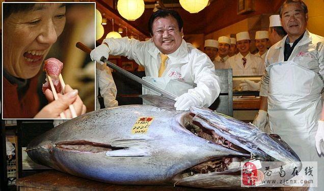 史上最贵金枪鱼:售价1.55亿日元