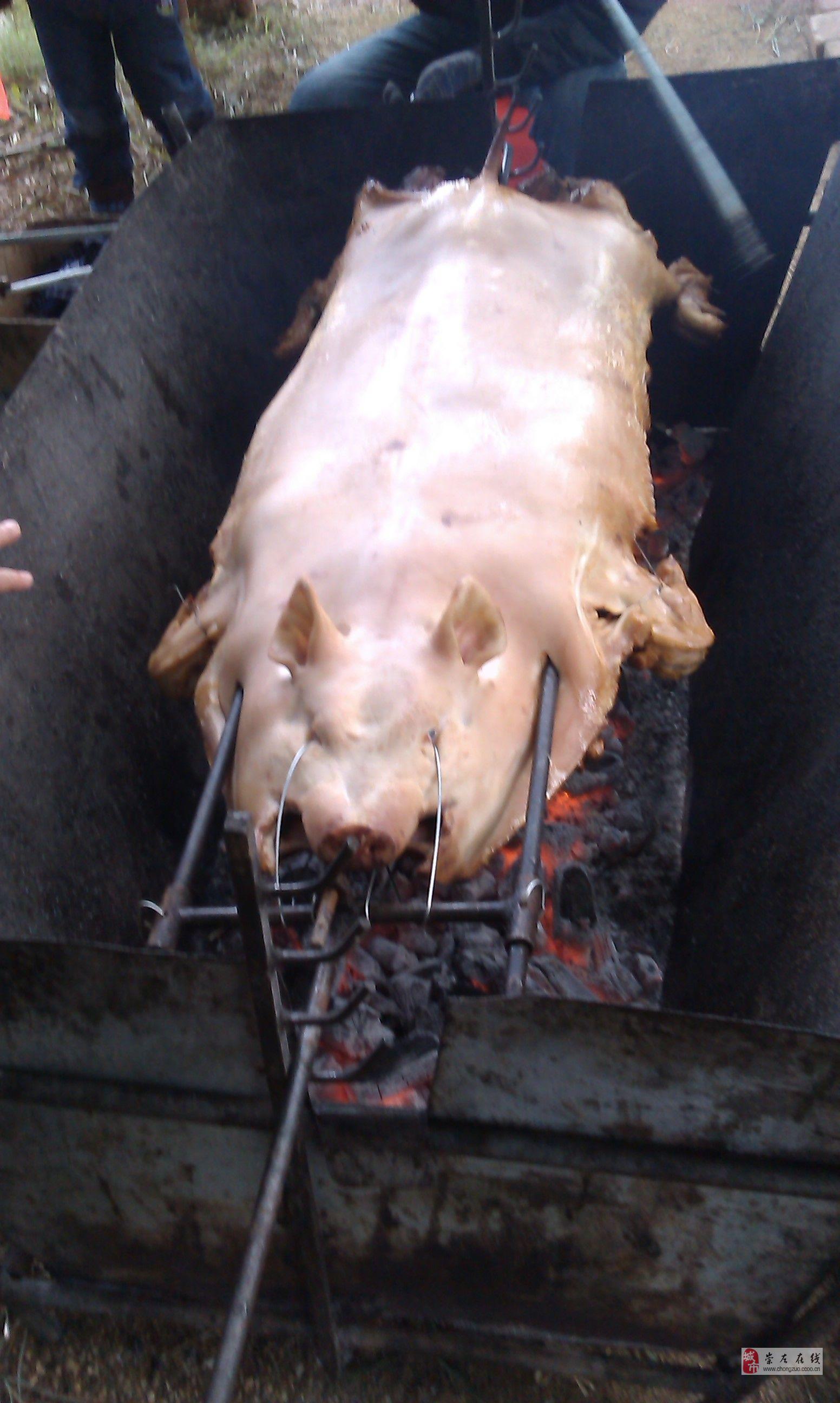 [原创]烤猪猪全过程