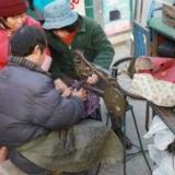 南京的修鞋工师傅