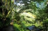大雨过后的彩虹,