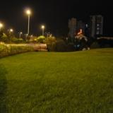 北干道夜景