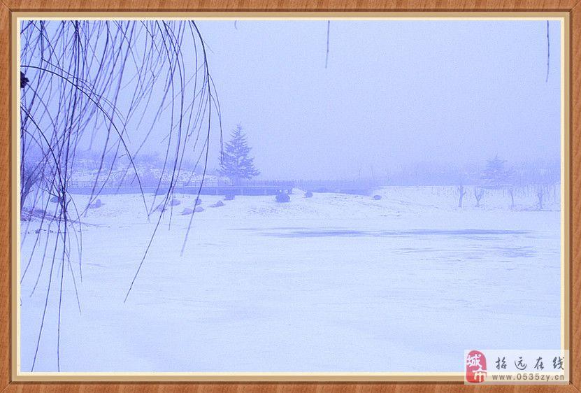 [原创]雾中小景