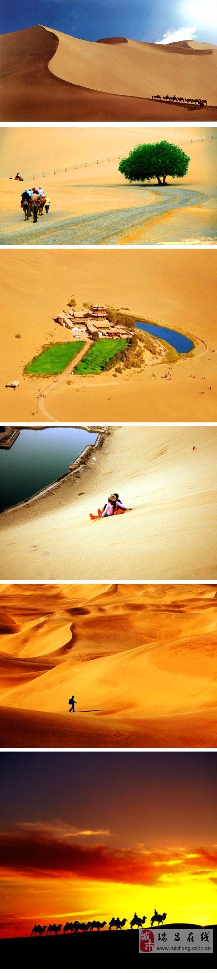 大漠的魅力。