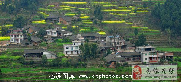 苍溪县三川镇 你旅游的最佳选择