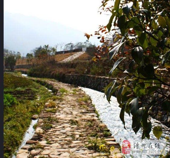 长泰山重村的春日时光