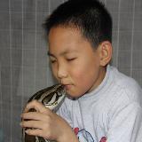 人蛇情未了   13岁男孩与巨蟒同床共枕12年