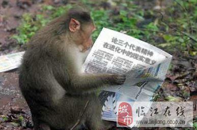 广州动物园招聘饲养员考马克思主义理论
