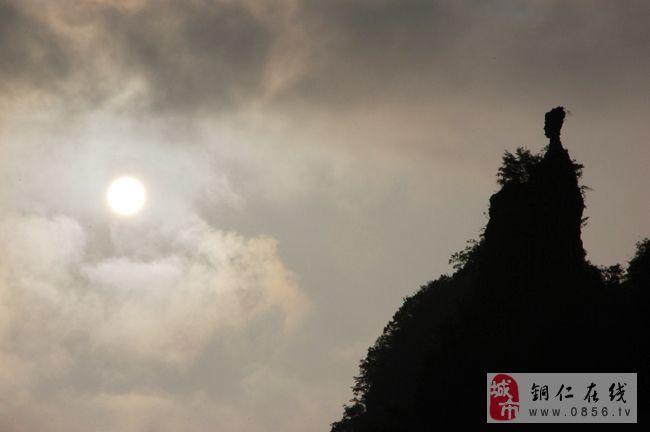 铜仁六龙山风景区 天然的竹海生态公园