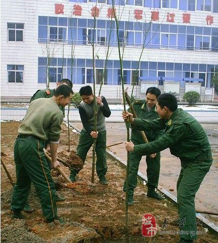 [图]新葡京平台新春植树忙