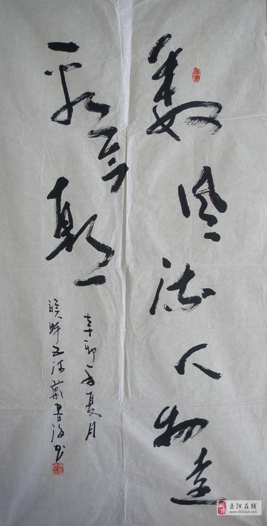 [原创]中国当代知名实力派书法家戴书海老师最新力作