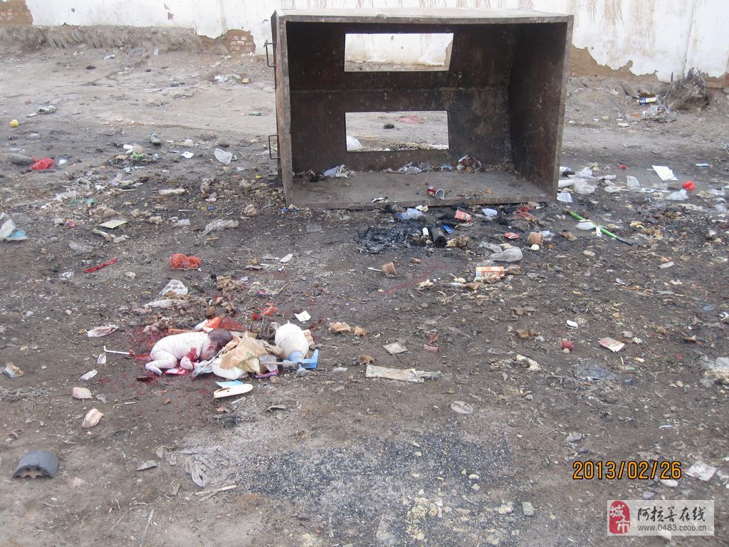 [原创]阿左旗吉兰泰九巷垃圾箱旁发现一名男弃婴