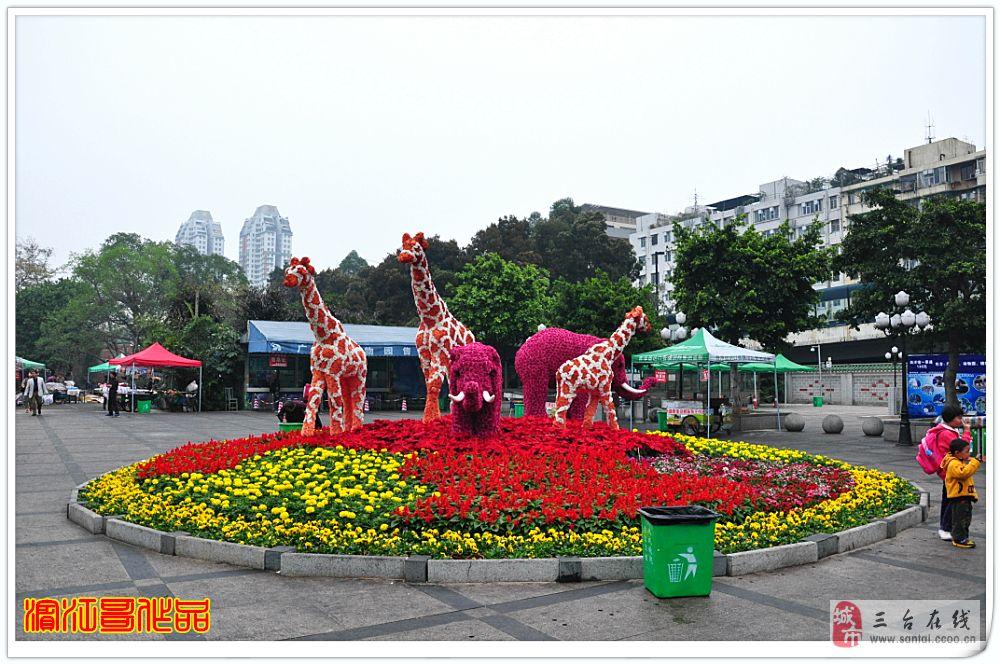 滨江哥春节广州溜达记(14):广州动物园