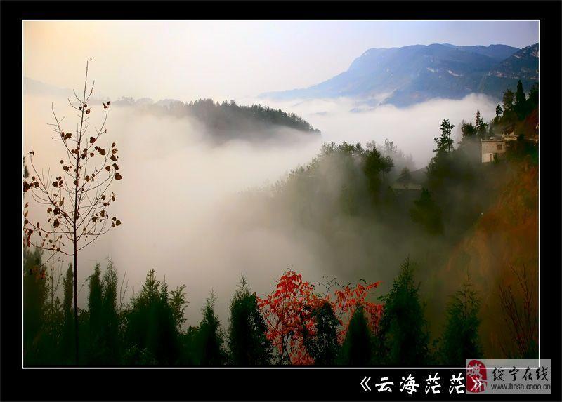 青山绿水,绿洲情结——澳门新葡京官网美景集合