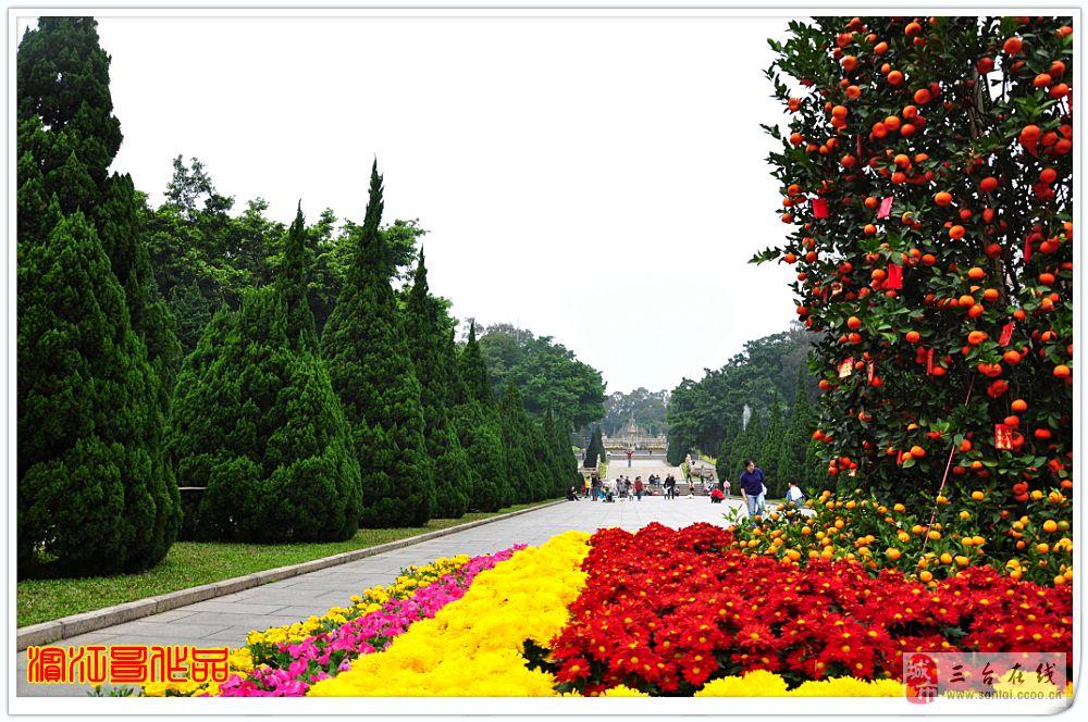 滨江哥春节广州溜达记(15):黄花岗公园