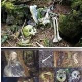 神秘自杀森林