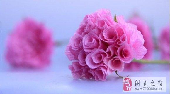 绿色)铁丝  剪刀 胶水 订书机; 纸玫瑰媲美真玫瑰; 材料:皱纹纸(粉红