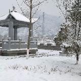 [原创] 雪——888真人娱乐信息网888真人娱乐论坛