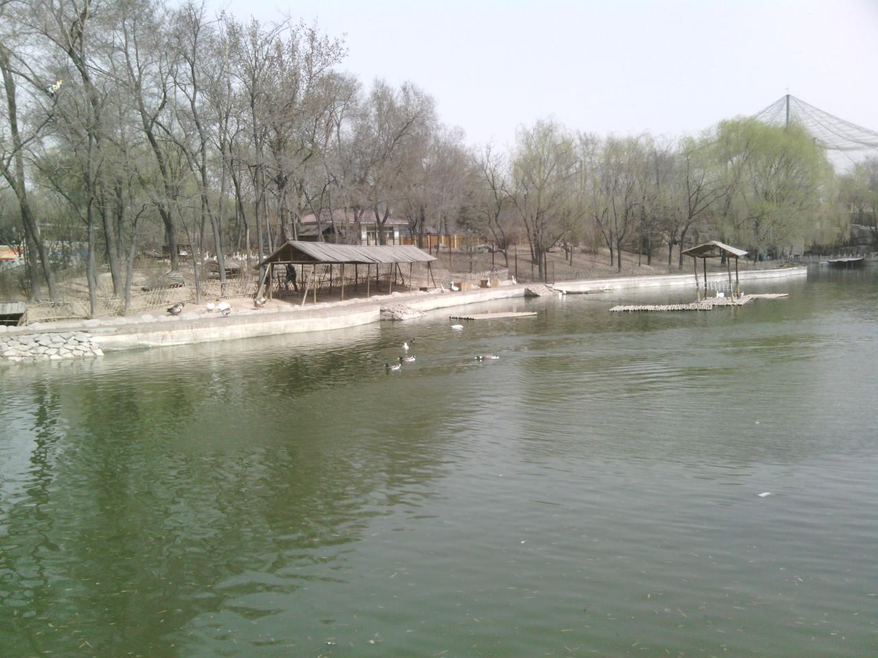 太原动物园之旅论坛图片