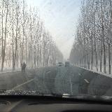 今天�下雪了,上班路上�S意拍了���