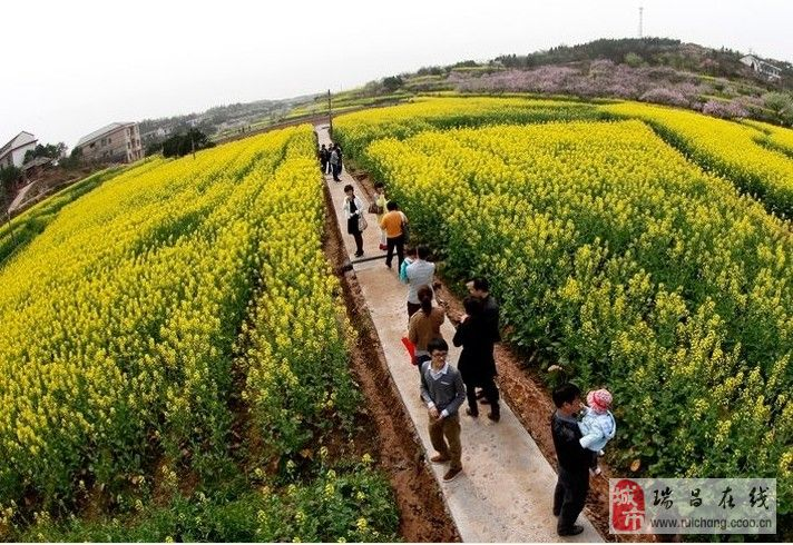 景色怡人的美丽中国