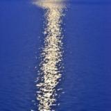 水中的月光-玉田�z影