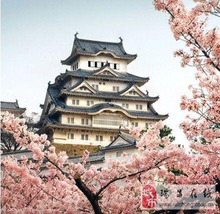 春暖花开,走起来。