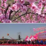 太阳城第12届桃花节开幕式现场直击,给没去朋友们分享下!