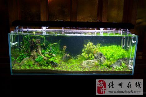 [原创]发点专业点的,90厘米水草生态缸制作过程.本人制作!图片