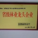 甘肃玉门胜龙新疆杨品牌