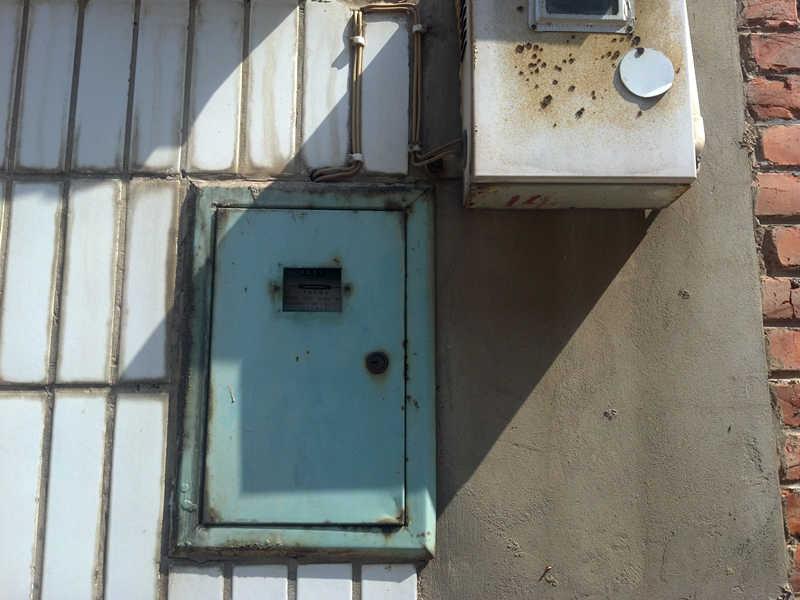 住在邻居家墙洞里的小麻雀