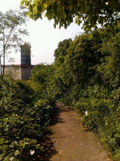 林花扫更落,径草踏还生。---耒视传媒鹿岐峰风景拍摄