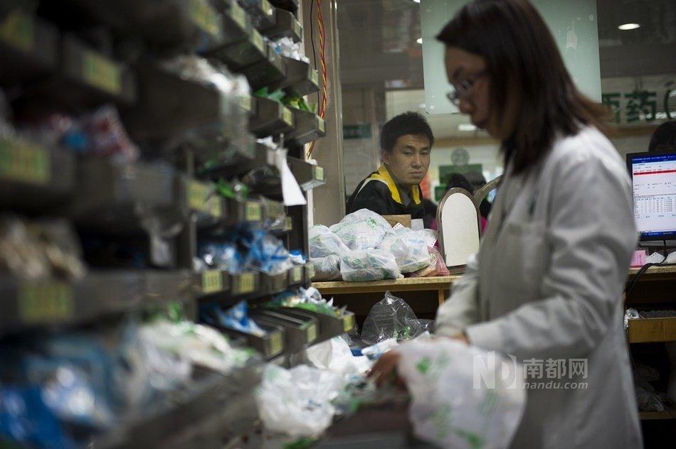 河北出台人感染禽流感中医防治方案