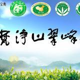 品梵净山绿茶  享受健康人生
