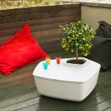家具上直接种植物,美吧!!