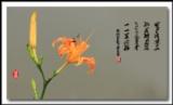 [分享][转贴]《萱草花》献给天下母亲