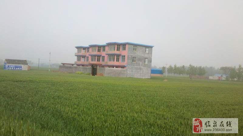 安徽阜阳农村房子图片